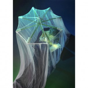 Moustiquairede imprégnée deltaméthrine SpiderNet