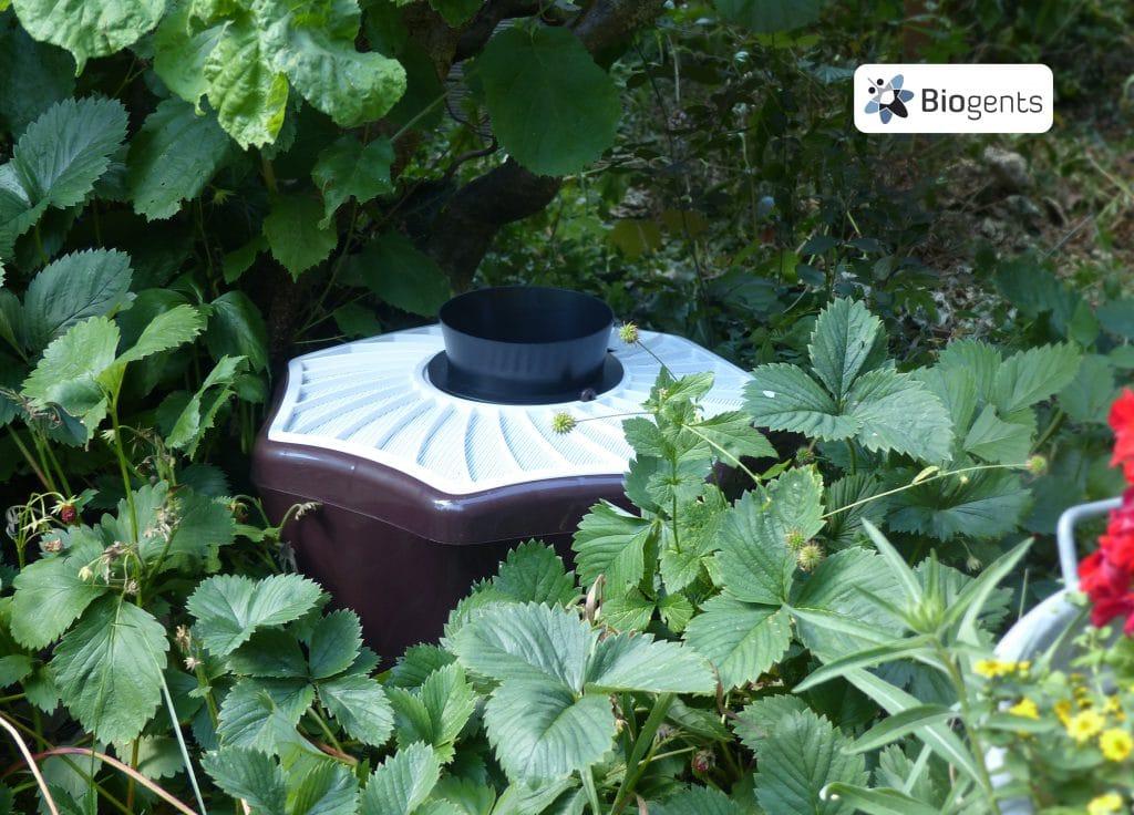 Piège BG Mosquitaire dans la verdure