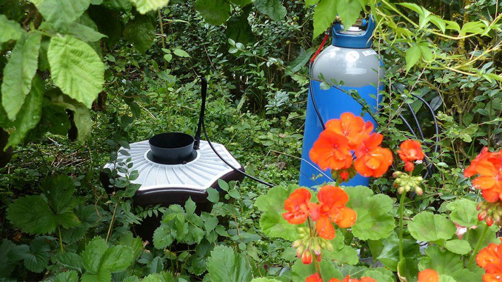 Mosquitaire CO2 derrière un massif de fleur