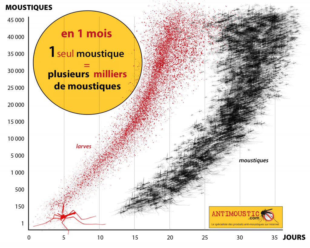 Graphique de reproduction des moustiques