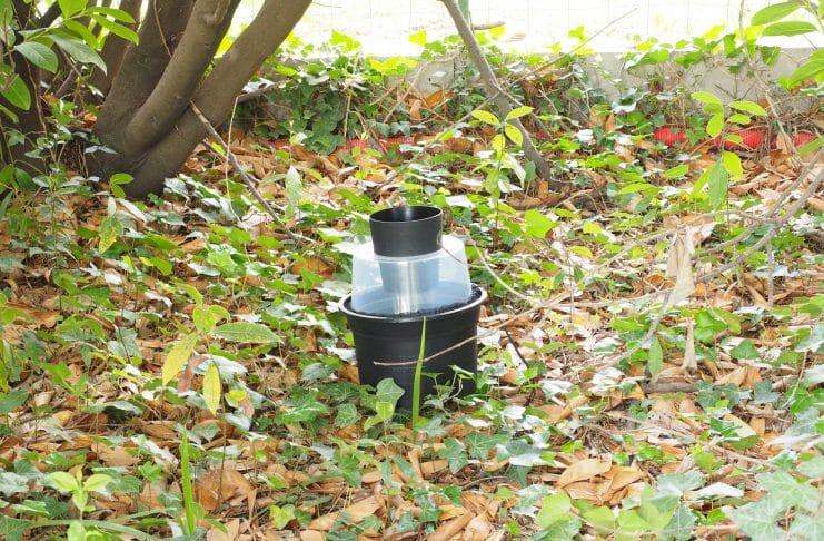 Le BG-GAT sur des feuilles