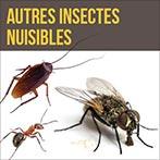 Les autres insectes nuisibles, mites, puces, tiques, cafards, etc.